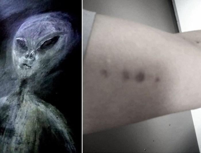 Alien Abduction Of Paula Smith