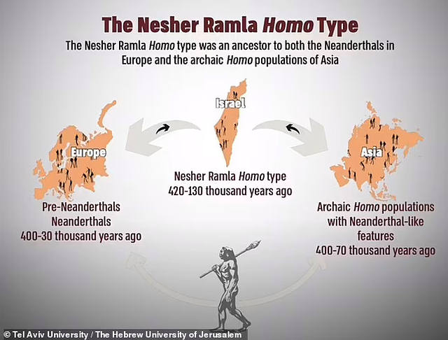 Nesher Ramla People: Ancient Humans That Lived Over 1,00,000 Years Ago Discovered In Israel