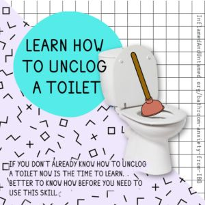 If you don't already know how to unclog a toilet now is the time to learn. Better to know how before you need to use this skill.
