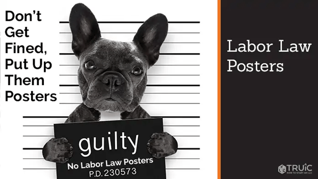 what labor law posters do my business
