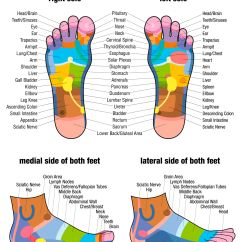 Foot Nerve Endings Diagram Pioneer Car Stereo Deh 150mp Wiring Reflexology That Lowers High Blood Pressure