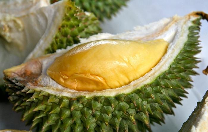 Inilah JenisJenis Dan Gambar Durian Yang Paling Populer