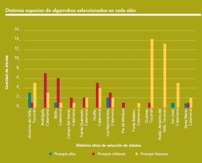 Programa de recuperación de algarrobos en Campo del Arenal