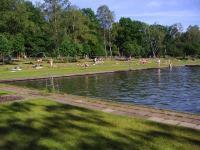 Wird das Naturbad Kiwittsmoor saniert? | Infoarchiv ...