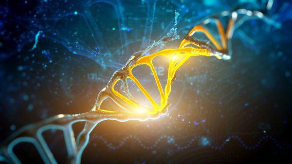 Se eliminaron las células infectadas y, por consiguiente, la capacidad del virus para replicarse y expandirse por el sistema (iStock)