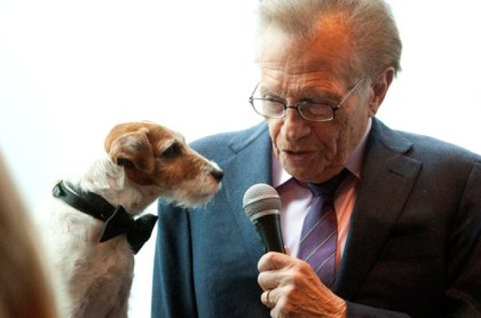 """Uggie, el perro de la película """"The Artist"""", """"entrevistado"""" por Larry King (REUTERS/Andrew Kelly)"""