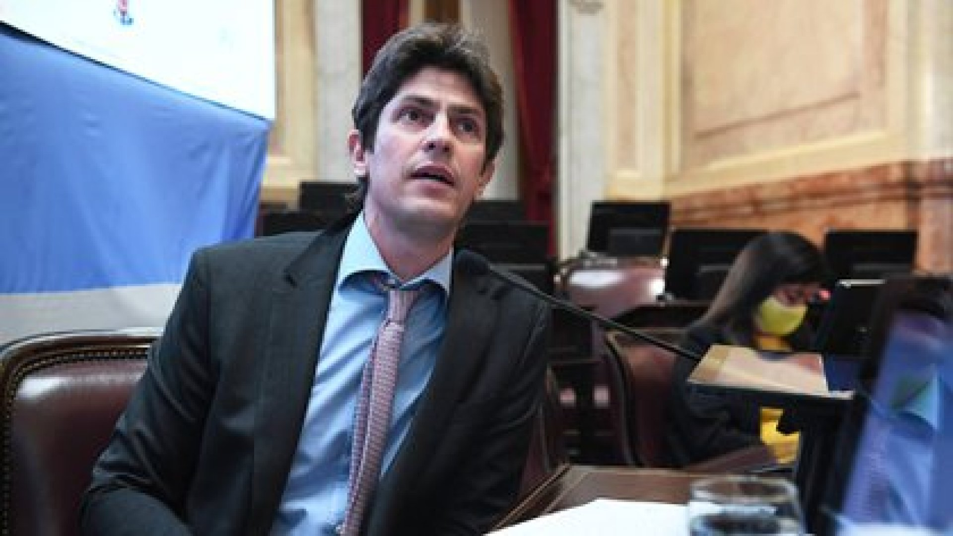 El senador radical Martín Lousteau (Senado)
