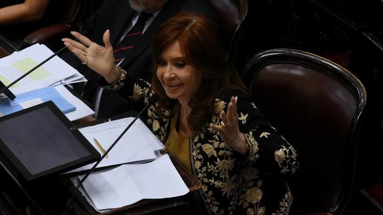 La ex presidente Cristina Kirchner (Nicolás Stulberg)