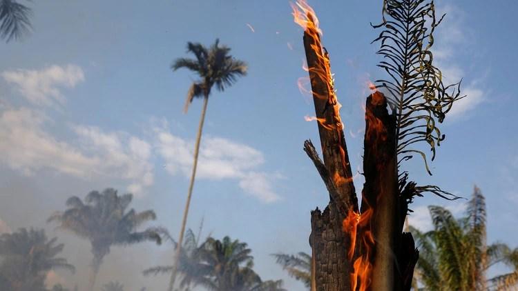 Los incendios en la Amazonía preocupan al mundo entero (Reuters)