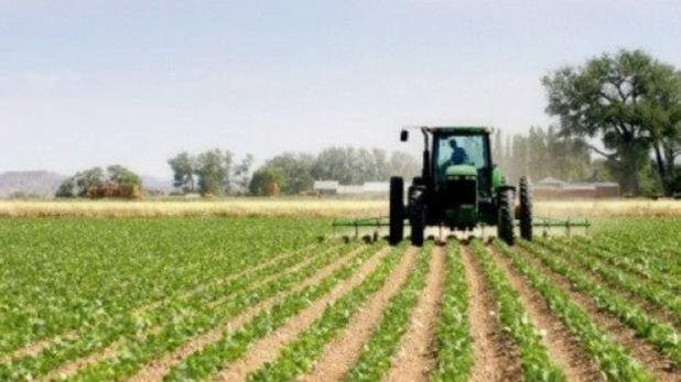El mercado de soja también presenta un aumento de las ventas por parte de los productores