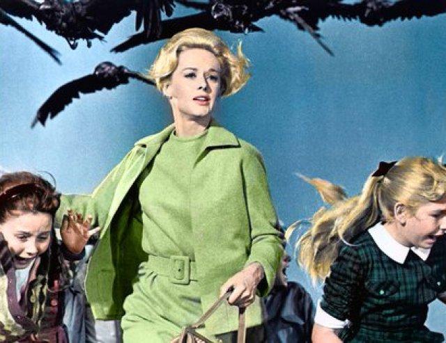 Una de las escenas del ataque de los pájaros que obliga a todo el pueblo a refugiarse en una cafetería. Las aves están libres, la gente enjaulada (Universal/Kobal/Shutterstock)