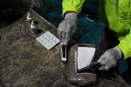 En el caso de Colombia la presunta alianza estaría enfocada en la cadena de siembra, recolección y procesamiento de hoja de coca para luego almacenar la cocaína y distribuirla para México y Estados Unidos (Foto: Reuters)