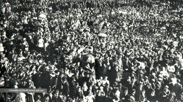 Fiesta del Día del Animal. En 1908 y tras casi dos años de insistencia, Ignacio Albarracín logró que el país tenga un día dedicado a hablar de los animales. Cerca de 15 mil personas asistieron a la primera celebración en Buenos Aires.