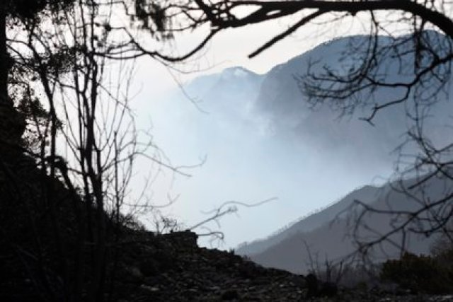 Un incendio forestal es fuego no programado dentro de bosques, selvas, zonas áridas o manglares (Foto: EFE/Ramón Cruz)