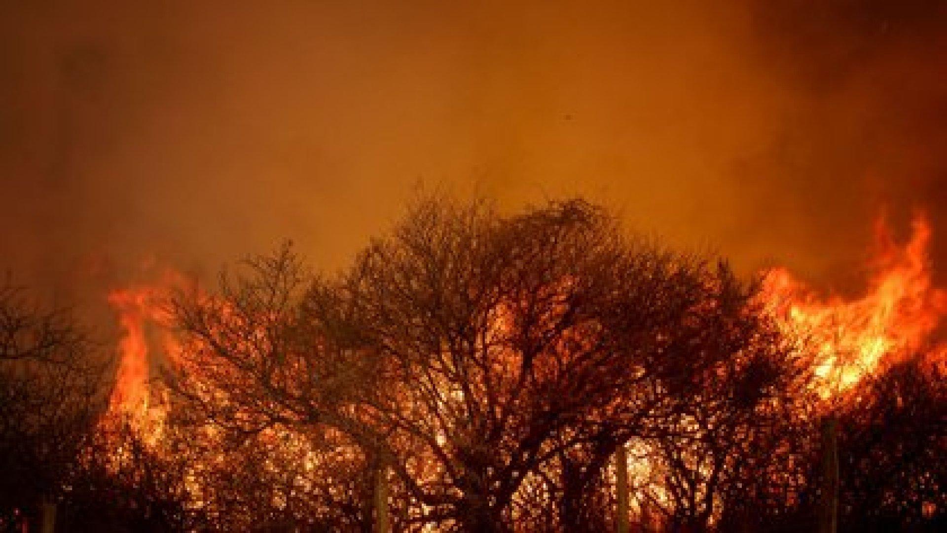 Los expertos aseguran que el 98% de los incendios de Córdoba fueron originados por el ser humano