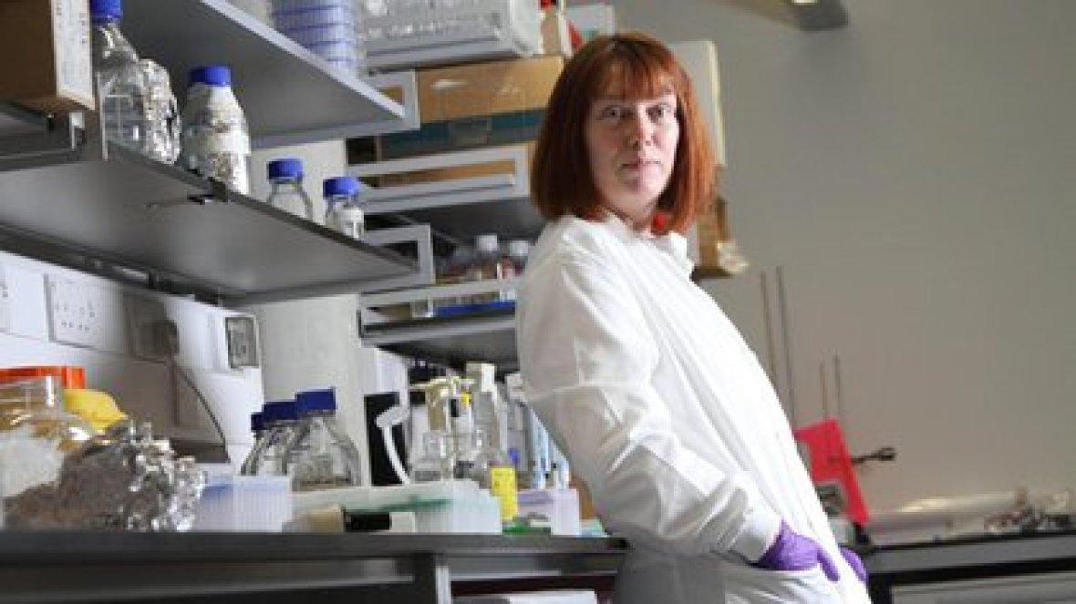 Sarah Gilbert, profesora de vacunología de Oxford y responsable del proyecto.