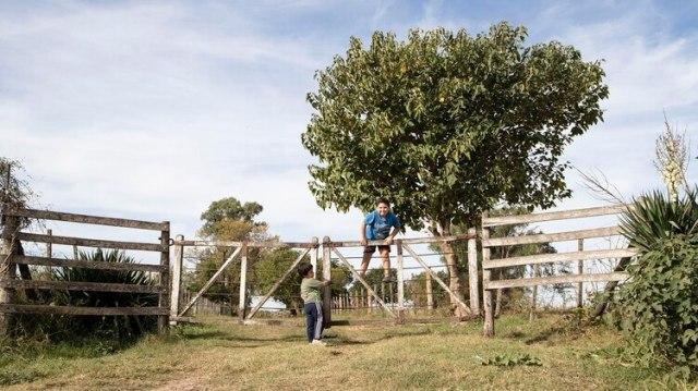 Los primos Díaz juegan en la tranquera de uno de los campos involucrados, frente a sus casas