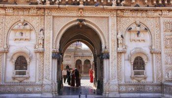 En el remoto pueblo de Deshnoke en Rajasthan, India, se encuentra una de las mayores curiosidades del mundo (iStock)