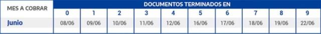 El cronograma de pago para la Asignación Universal por Hijo (AUH) para junio, que incluirá el pago de los $10.000 del IFE.