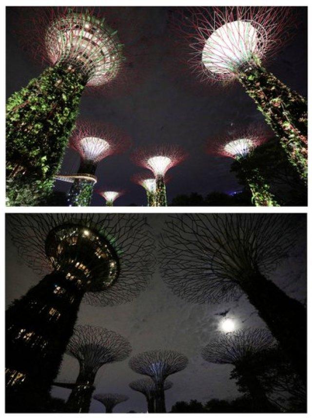las estructuras artificiales en forma de árbol llamadas Supertrees, antes (arriba) y después de que se apagaran las luces en Gardens By the Bay, en Singapur