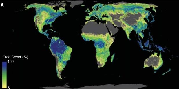 Esta imagen muestra los lugares donde los bosques pueden crecer potencialmente, si las naciones desean maximizar la reducción de CO2 en la atmósfera plantando árboles, según una nueva investigación. FUENTE: Jean-Francois Bastin et al. Science