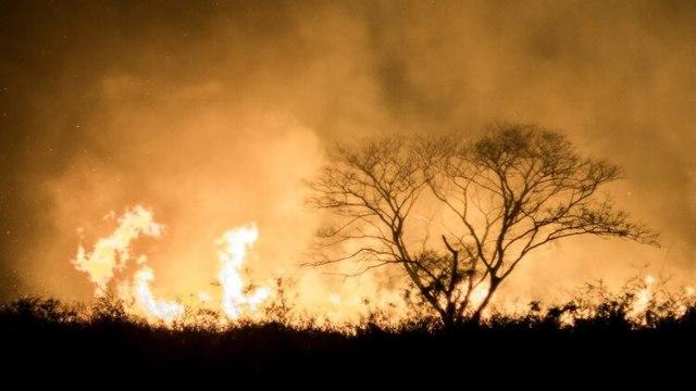 Más de dos millones de hectáreas fueron arrasadas por los Incendios en Bolivia