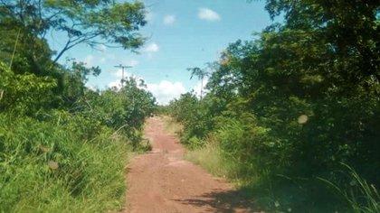 Una zona de Guaicupa entre Santa Cruz del Orinoco y Santa Clara