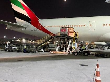 Un cargamento con vacunas contra el coronavirus es descargado en el Aeropuerto Internacional de Dubai, en Emiratos Árabes Unidos (REUTERS/Abdel Hadi Ramahi)