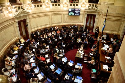 El proyecto de ley para declarar a la educación un servicio esencial fue ingresado en el Senado (EFE/Fabián Mattiazzi/Archivo)