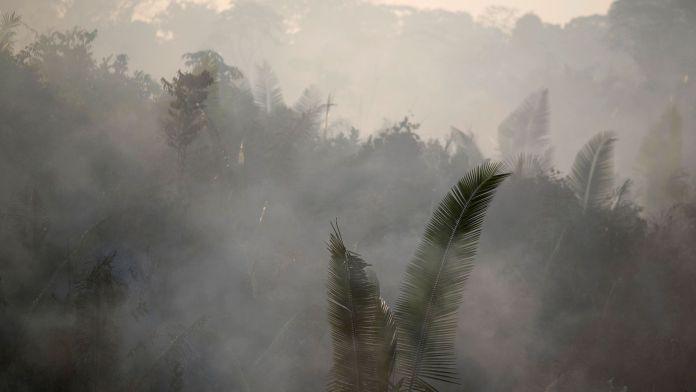 Incendio en el Amazonas (Reuters)