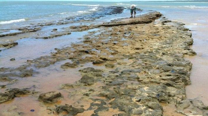 El presidente de Brasil, Jair Bolsonaro, dijo que las misteriosas manchas de petróleo que aparecieron en 132 playas en el noreste de Brasil tienen su origen en otro país, sin mencionar cuál (AFP)