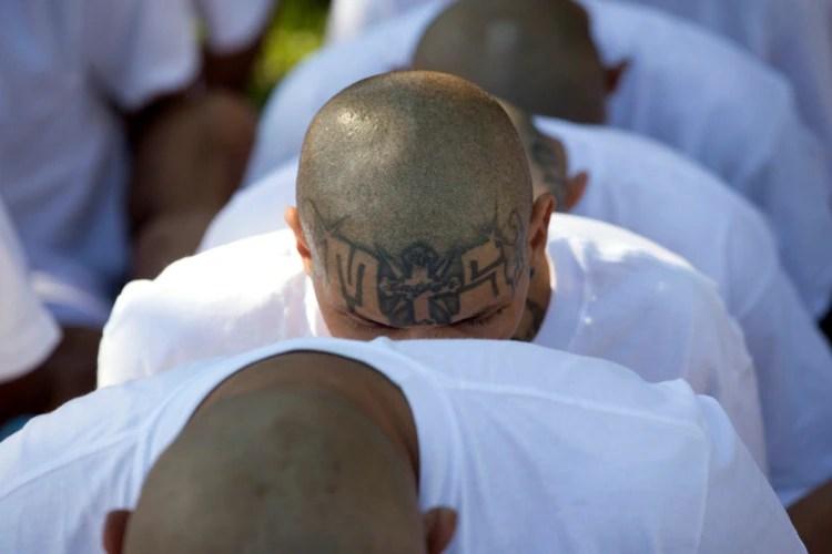 En El Salvador las maras o pandillas están integradas por más de 65.000 jóvenes y adultos, en su mayoría miembros de la Mara Salvatrucha. Se encuentran en barrios y comunidades populosas y según las autoridades están involucrados en el narcotráfico, la extorsión y el crimen organizado (AP)