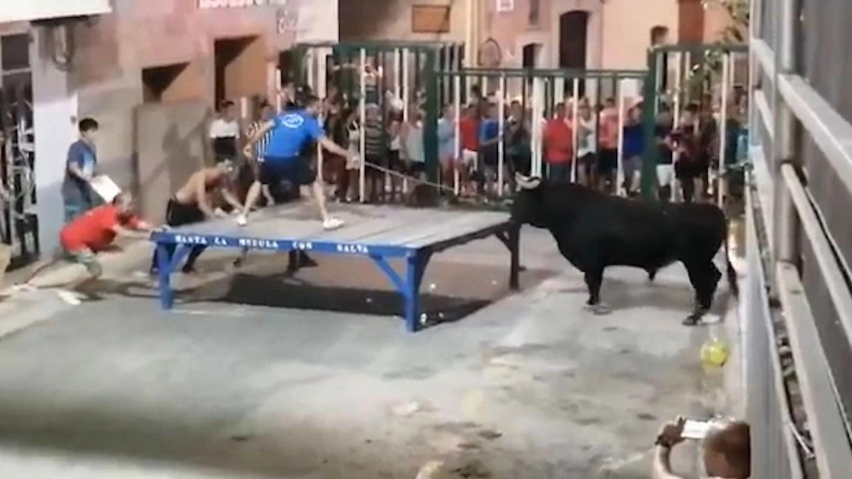 Un hombre estaba provocando al toro con un palo antes del ataque.