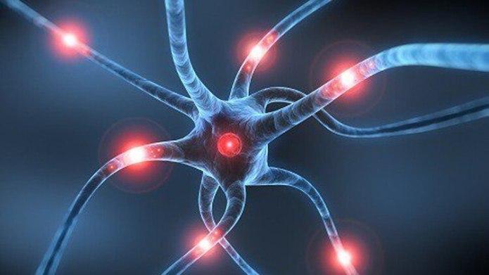 Cada minuto, el cerebro pierde 2 millones de neuronas ante un ACV no atendido