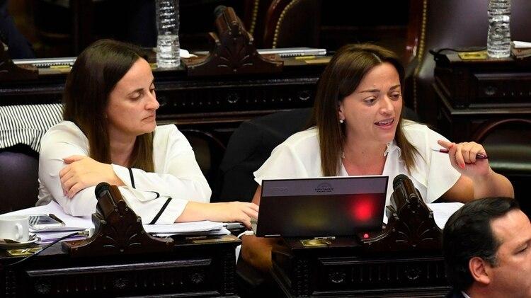 La diputada Cecilia Moreau fue una de las oradoras durante la sesión
