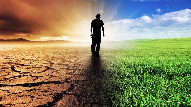 El cambio climático es un factor clave del reciente aumento de la hambruna en el mundo tras una década de constantes descensos (Shutterstock)