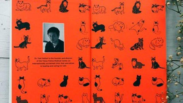 Según Hattori, una persona es, desde el punto de vista de un gato, un minino grande, al que hay que enseñarle cosas.