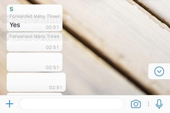 Así se vería la notificación cuando un mensaje es reenviado muchas veces (WABetaInfo)