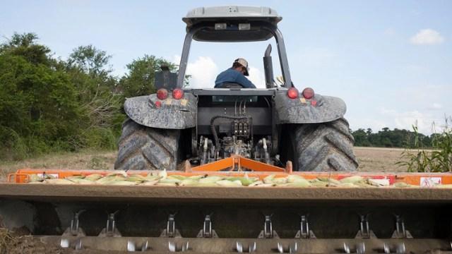 Un tractor limpia un campo de maís sin sembrar debido a la falta de semillas en Turen, en el estado de Portuguesa (Bloomberg)