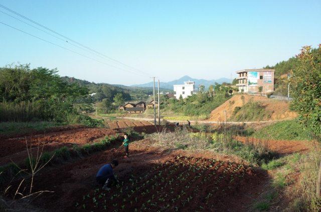 Durante años, los hombres han abandonado el condado de Leiyang en la provincia central china de Hunan para trabajar en la metrópoli fronteriza de Shenzhen (The Washington Post / Gerry Shih)