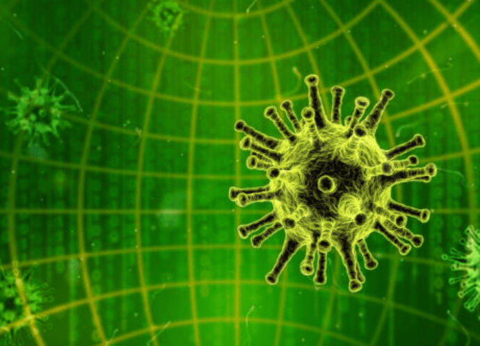 computer viruses and its types