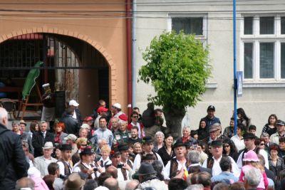 parada-portului-popular-2010-7