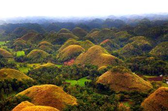 Cheap Bohol Tour Packages