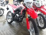 Hey Joe Motorcycle And Scooter Rental Bohol 024