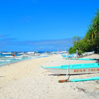 Travel Guide For First Timers Balicasag Island Panglao, Bohol Philippines! 001