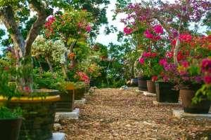 Kangcaramel Cave Tanday Saragosa Rd Baclayon Bohol Philippines 0006