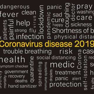 Corona Virus Recovery Chart Infobohol