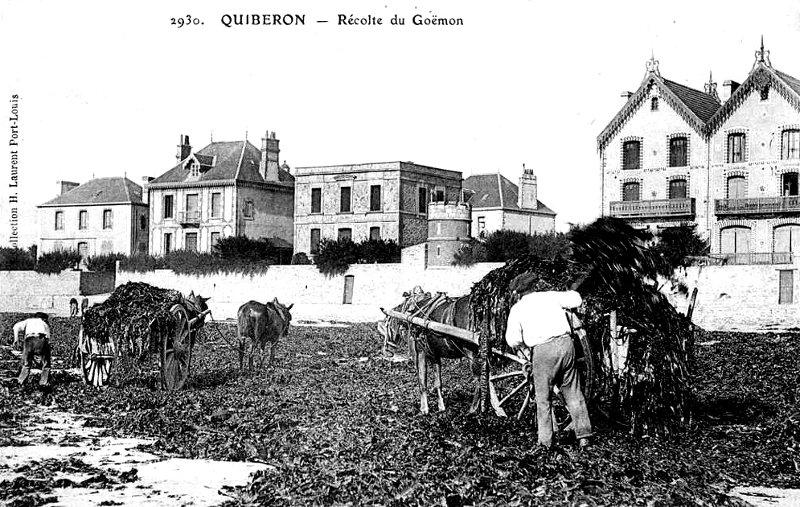 Ville de Quiberon (Bretagne).