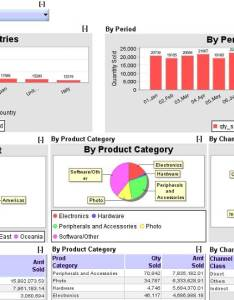 Image also excel dashboard  charts gauges tables and drills reports rh infocaptor