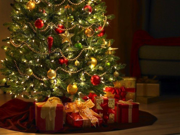 "Il monito di Coldiretti: Preferire alberi di Natale veri a quelli ""made in China"""